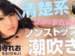 HEYZO 0517 Leo Saionji Adult Masturbation Neat System Obedient Housekeeper Of Nonstop Squirting To Five Dominance Is Happy